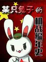某只兔子的机战编年史
