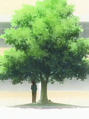 鲁迅先生才不是树
