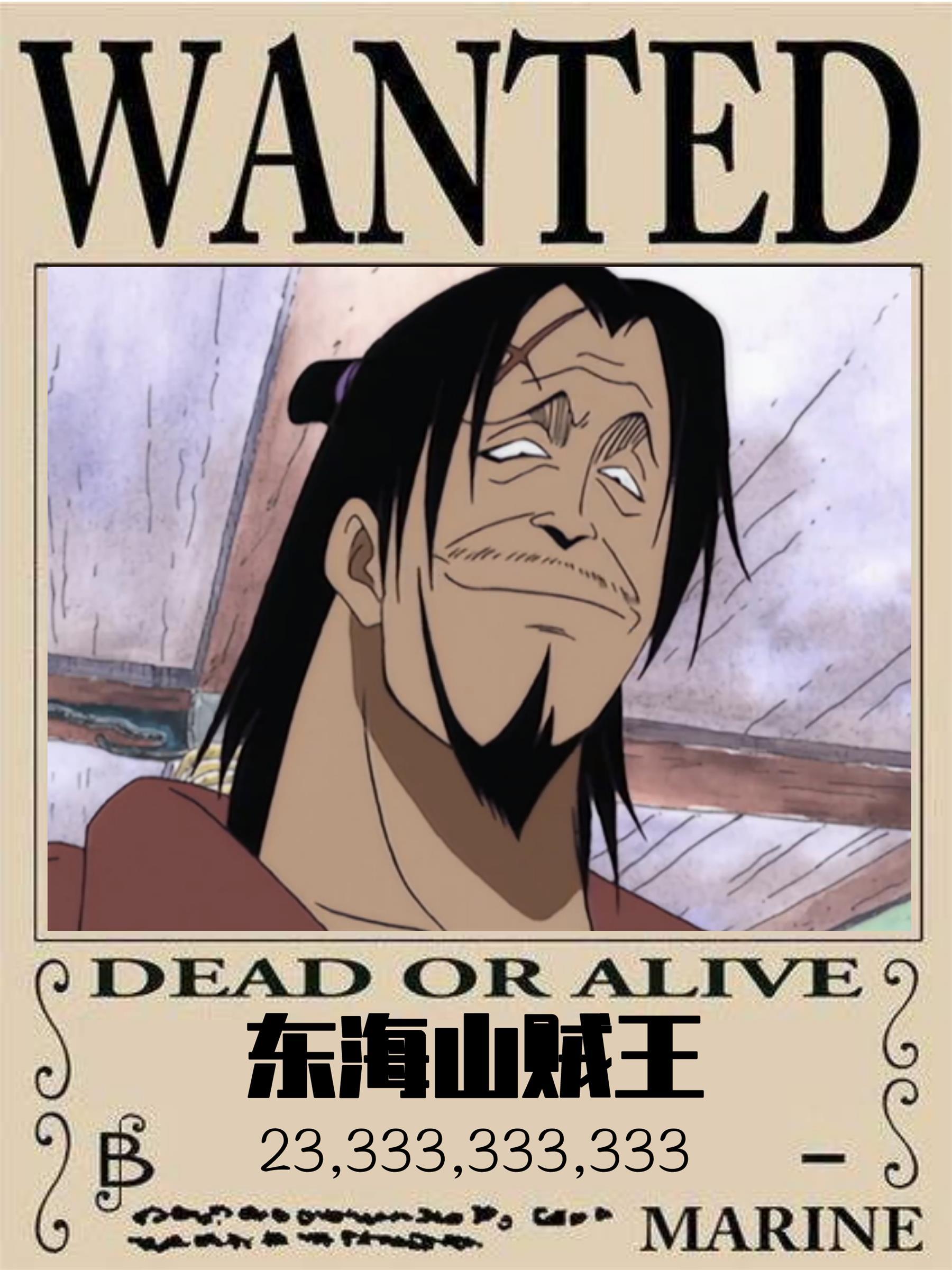 我,东海山贼王